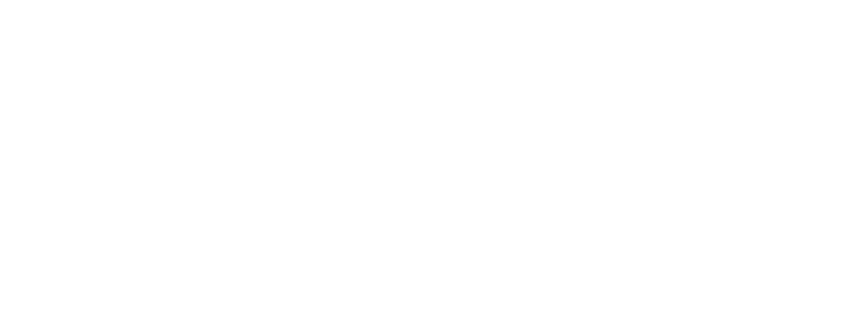WildFire Brand Consulting